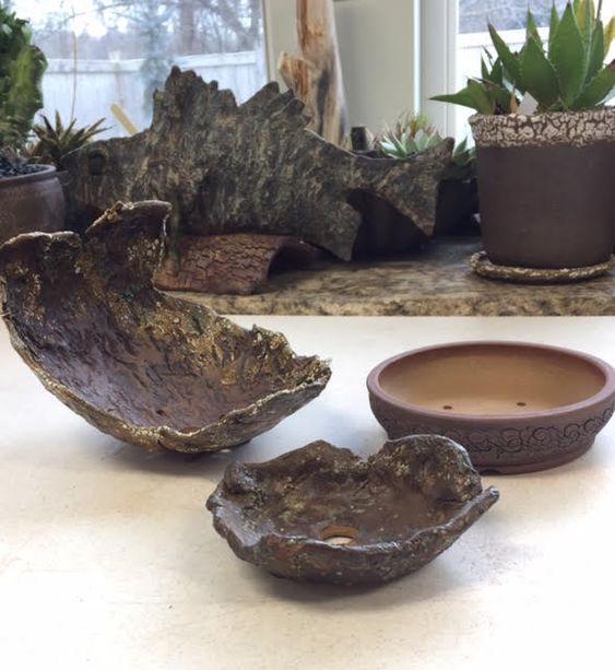 pot bonsai unik